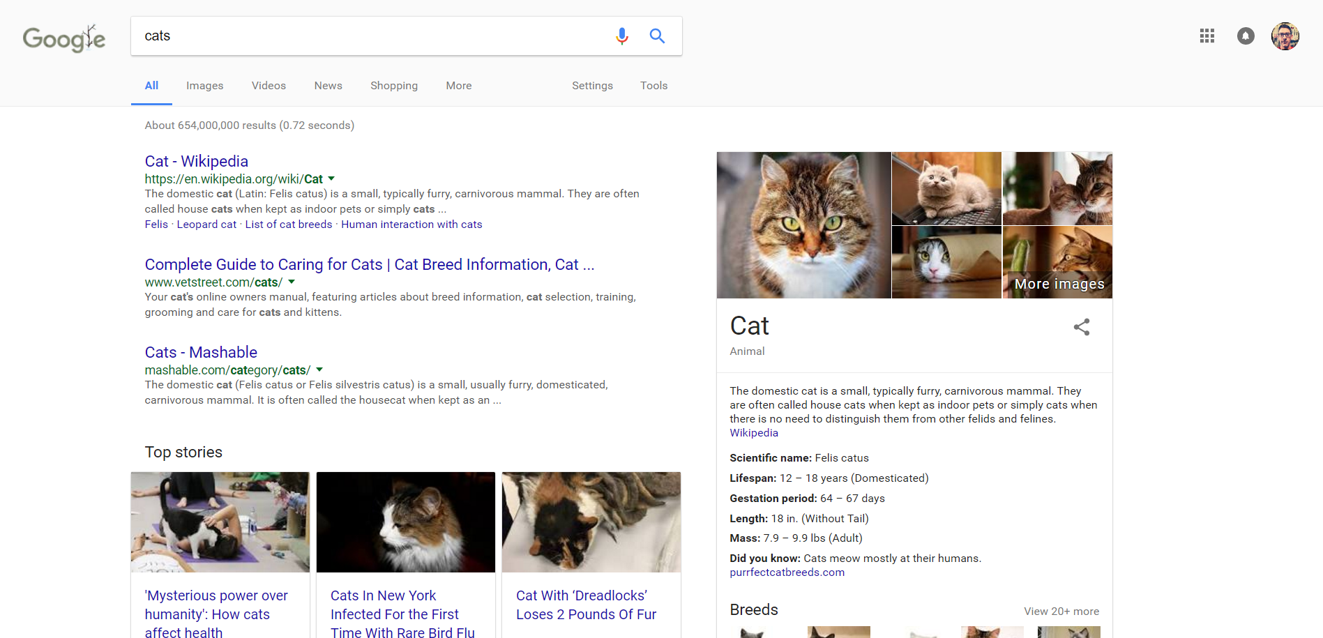 Google Will use Knowledge Graph to Display Quick Descriptions of Sites in Searches